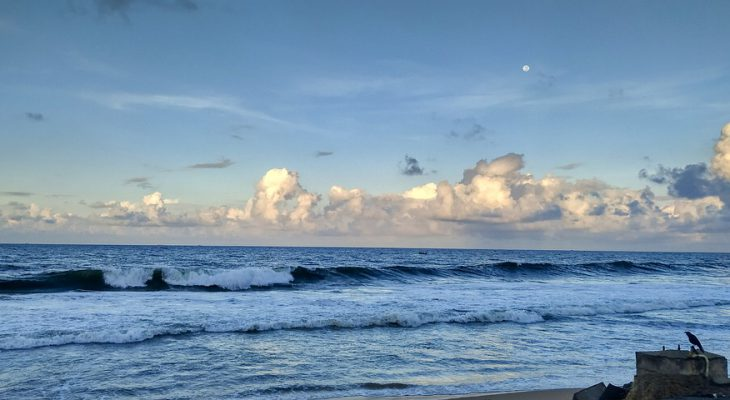 Pływy morskie